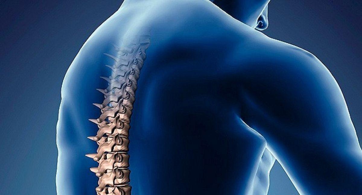 El 19 de Septiembre es el día mundial de la columna vertebral | Dr ...
