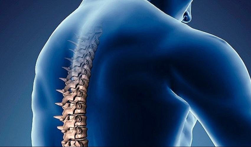 El 19 de Septiembre es el día mundial de la columna vertebral